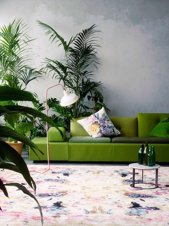 greenery selva tropical 2